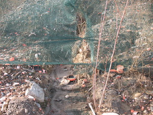 Erosion gully beneath fencing.