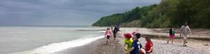 cropped-beach-1